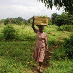 Resource: PPT from Engendering Agricultural Research